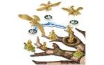 Фотография №1728: О Хвостах и Перьях (Tail Feathers)
